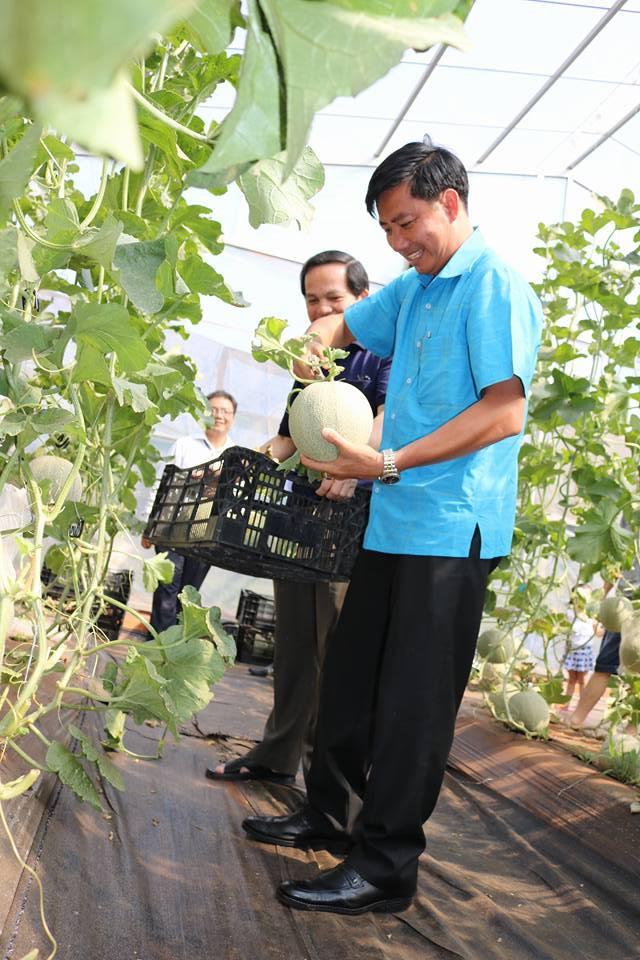 Phê duyệt Đề án thành lập khu công nghiệp ứng dụng công nghệ cao huyện Cư M'Gar