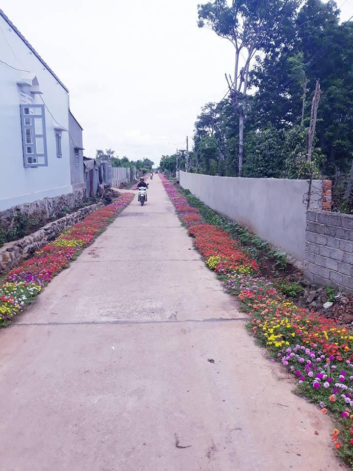 """Sức lan tỏa của mô hình """"Đường hoa phụ nữ"""" của Hội LHPN huyện Cư M'gar, tỉnh Đắk Lắk"""
