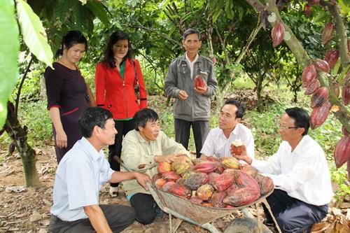 Báo cáo tổng kết 10 năm về kinh tế hợp tác, HTX thực hiện Nghị quyết Trung ương 7 khóa X về nông nghiệp, nông dân, nông thôn
