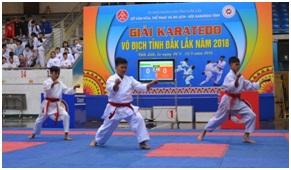 236 vận động viên dự giải Karatedo vô địch tỉnh Đắk Lắk năm 2018