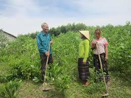 Báo cáo thi hành pháp luật về công tác bảo vệ và phát triển rừng gắn với giảm nghèo bền vững vùng dân tộc thiểu số và miền núi