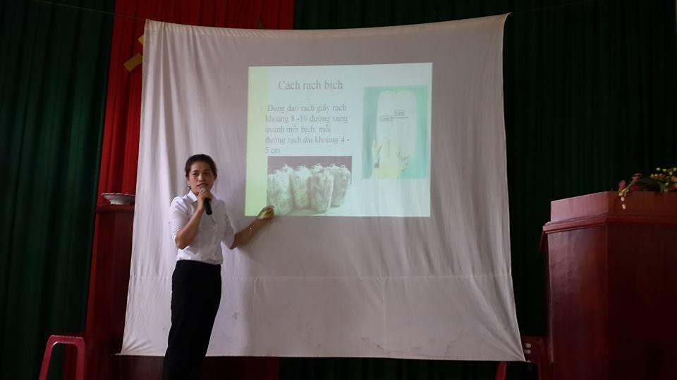 Tập huấn kỹ thuật trồng nấm cho hội viên phụ nữ