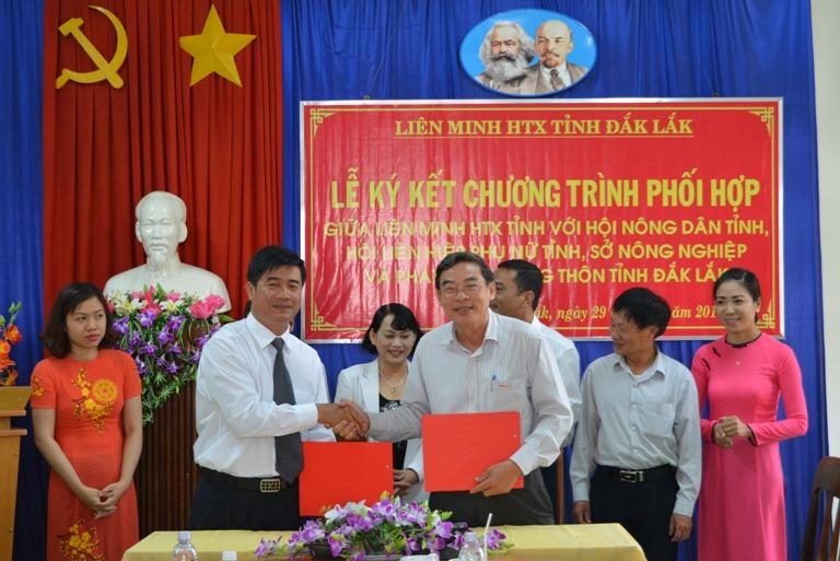 Ban hành Kế hoạch phát triển kinh tế tập thể tỉnh Đắk Lắk năm 2019