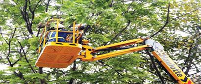 Phê duyệt kế hoạch lựa chọn nhà thầu Dịch vụ công ích đô thị trên địa bàn huyện Krông Pắc năm 2018