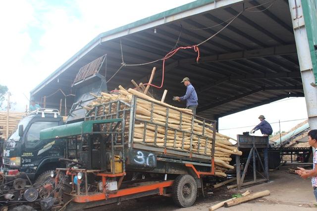 Huyện M'Đrắk: Thu ngân sách năm 2018 về đích sớm 4 tháng