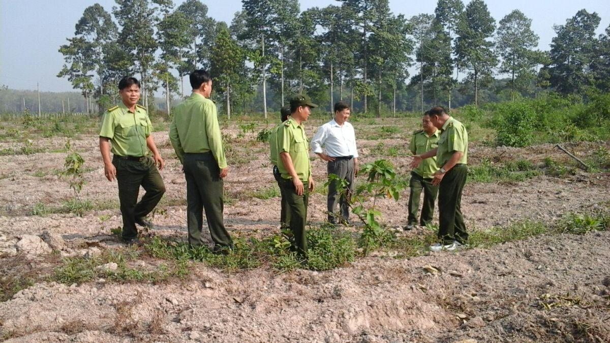 Thông báo kết luận của Phó Chủ tịch UBND tỉnh tại cuộc họp về dự án nông lâm nghiệp trên địa bàn