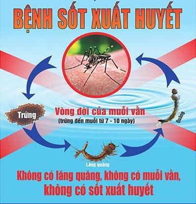 Tăng cường tuyên truyền phòng chống sốt xuất huyết trong trường học