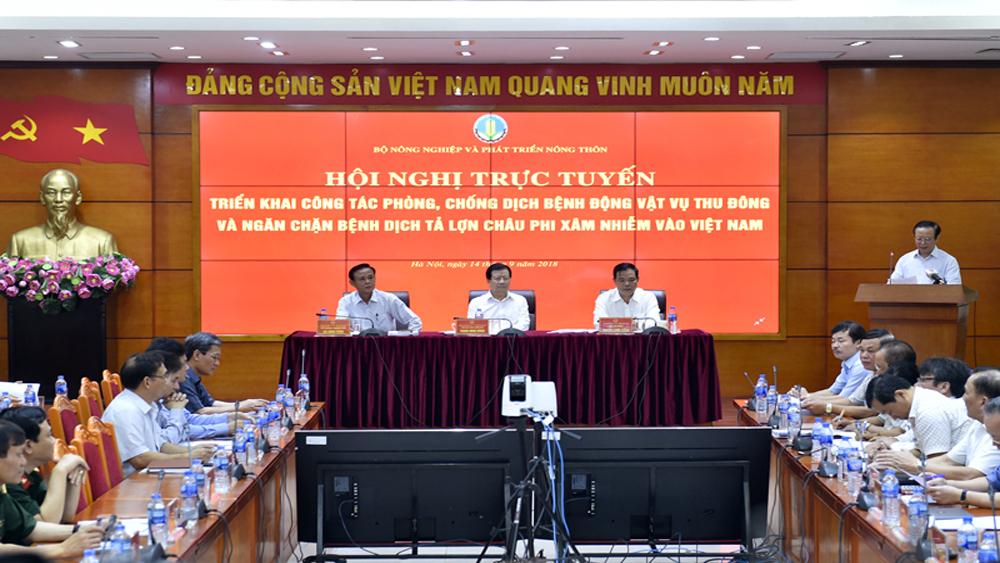 Ngăn chặn Dịch tả lợn Châu Phi xâm nhiễm vào Việt Nam