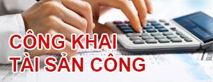 Đăng tải thông tin trên Trang thông tin điện tử về tài sản công