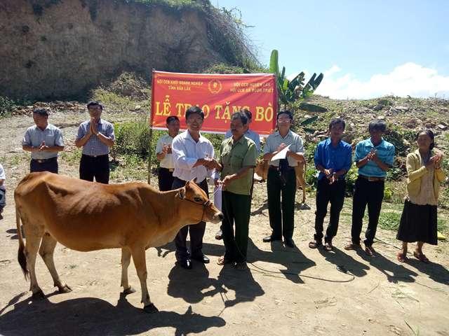 Tặng bò giống cho cựu chiến binh có hoàn cảnh khó khăn.