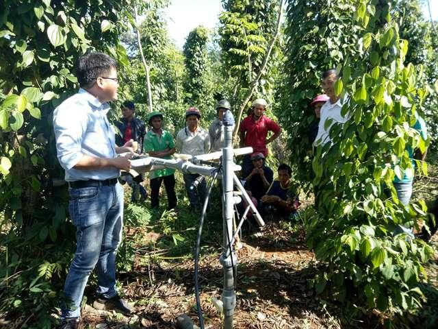 Hội thảo đầu bờ đánh giá mô hình tưới nước tiết kiệm cho cây hồ tiêu tại xã Đắk Phơi
