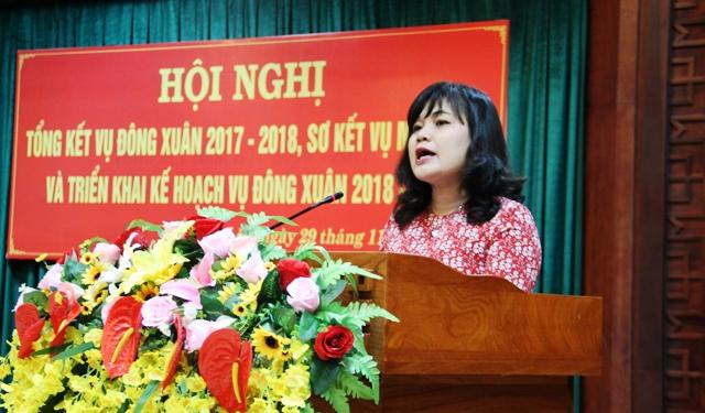 UBND tỉnh triển khai kế hoạch vụ Đông Xuân 2018-2019