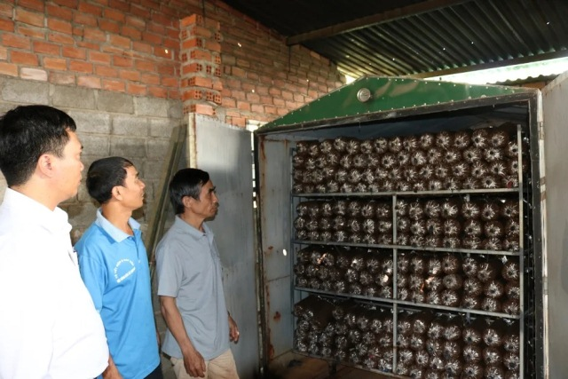 Hợp tác xã nấm sạch Cư M'gar sử dụng hiệu quả nguồn vốn vay giải quyết việc làm của Ngân hàng chính sách xã hội