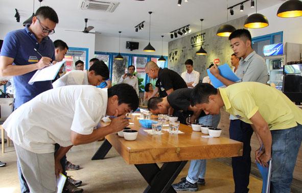 Quyết định thành lập Ban Tổ chức và Ban Thư ký Cuộc thi Cà phê đặc sản Việt Nam 2019