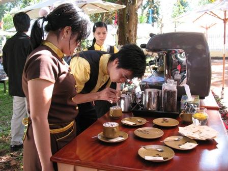Quyết định Ban hành Quy chế cuộc thi Cà phê đặc sản Việt Nam năm 2019