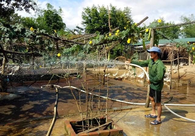 Nuôi vịt đẻ trứng trở thành mô hình phát triển rộng khắp trên địa bàn huyện Lắk