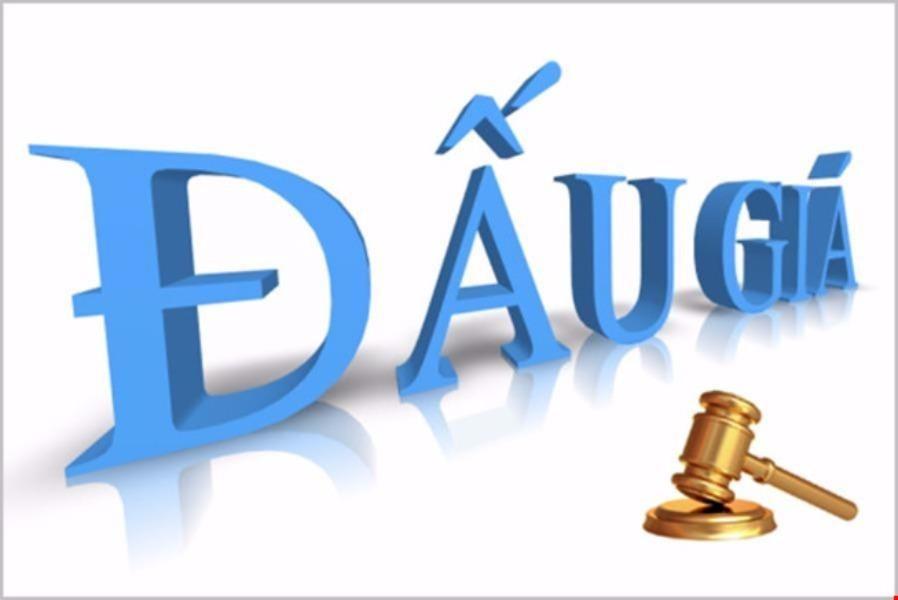 Tăng cường thi hành pháp luật về đấu giá tài sản công