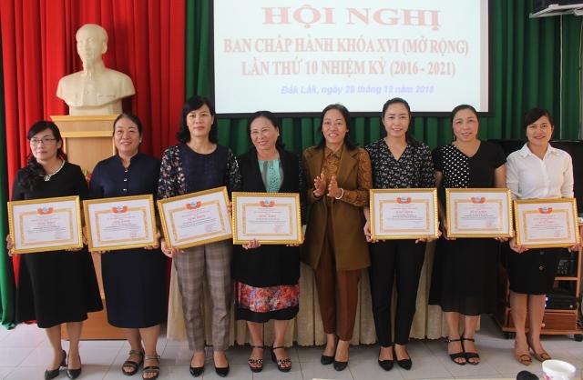 Hội Liên hiệp Phụ nữ tỉnh triển khai nhiệm vụ công tác năm 2019