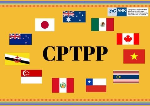 Triển khai Quyết định số 121/QĐ- TTg ngày 24/01/2019 của Thủ tướng Chính phủ