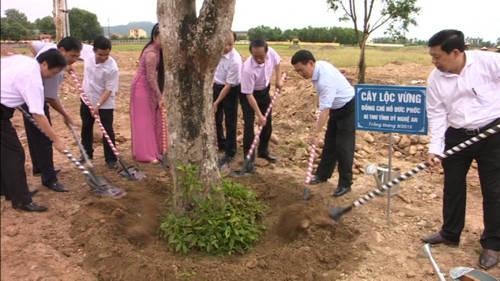 Tham mưu việc trồng cây lưu niệm tại Khu di tích Truông Bồn – tỉnh Nghệ An