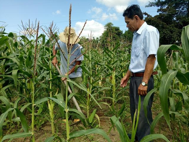 Xã Ea Trang (M'Đrắk) Những kết quả đạt được trong công tác xóa đói giảm nghèo