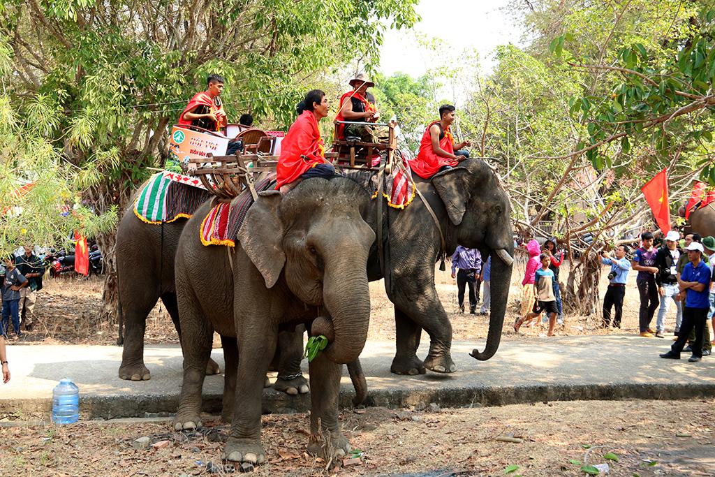 Lễ hội văn hóa truyền thống các dân tộc huyện Buôn Đôn: Lễ cúng bến nước và Lễ cúng sức khỏe cho voi