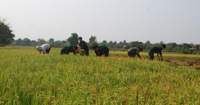 Bộ đội Biên phòng tỉnh Đắk Lắk với nhiều hoạt động ý nghĩa trong Tháng Thanh niên 2019