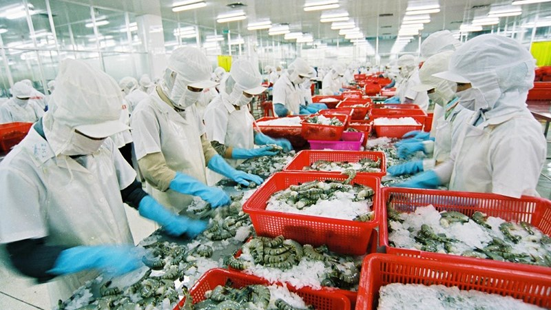 Báo cáo kết quả 05 năm thực hiện sắp xếp, đổi mới Công ty nông, lâm nghiệp