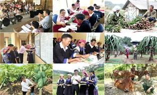 Ban hành Chương trình công tác năm 2019 của Ban Chỉ đạo các chương trình mục tiêu quốc gia tỉnh Đắk Lắk giai đoạn 2016-2020