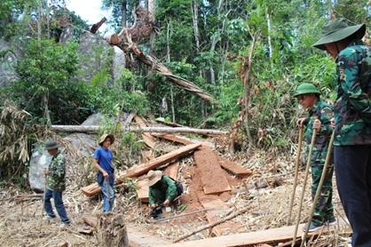 Khởi tố 3 bị can liên quan đến vụ án phá rừng tại xã Cư San (M'Đrắk)