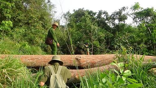 Tỉnh ủy Đắk Lắk gửi Thư khen Công an tỉnh
