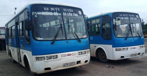 Quyết định ban hành Quy định về hoạt động vận tải đường bộ trong đô thị và tỷ lệ phương tiện vận tải hành khách đáp ứng nhu cầu đi lại của người khuyết tật trên địa bàn tỉnh Đắk Lắk