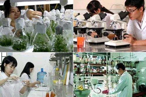 Thực trạng năng lực hệ thống các tổ chức dịch vụ khoa học và công nghệ trên địa bàn tỉnh