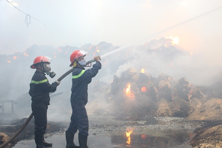 Cháy lớn tại Công ty cổ phần Lâm sản Đắk Lắk