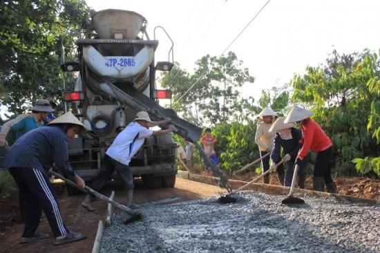 Hội viên Hội nông dân tỉnh đóng góp trên 4,5 tỷ đồng xây dựng nông thôn mới