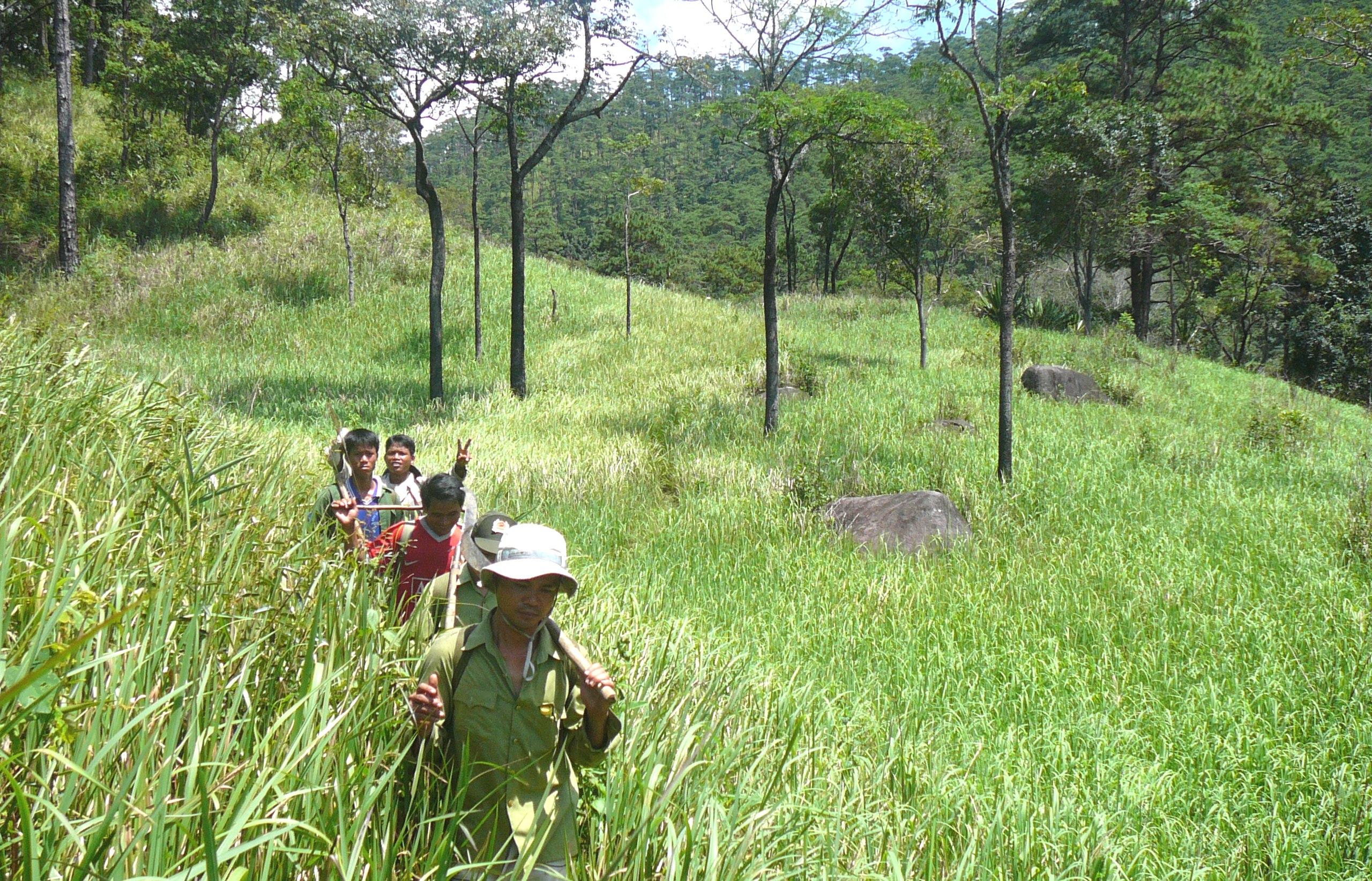 Thành lập các đoàn thanh, kiểm tra công tác quản lý, bảo vệ, phát triển rừng tại huyện Lắk, Buôn Đôn và Ea Súp