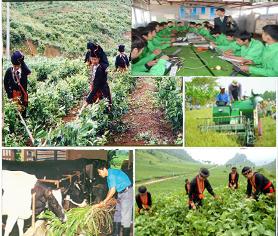 Phối hợp thực hiện nhiệm vụ KHCN phục vụ xây dựng nông thôn mới tại tỉnh Đắk Lắk.