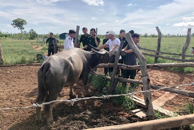 Bộ đội Biên phòng tỉnh Đắk Lắk tập huấn phòng chống dịch tả lợn Châu Phi