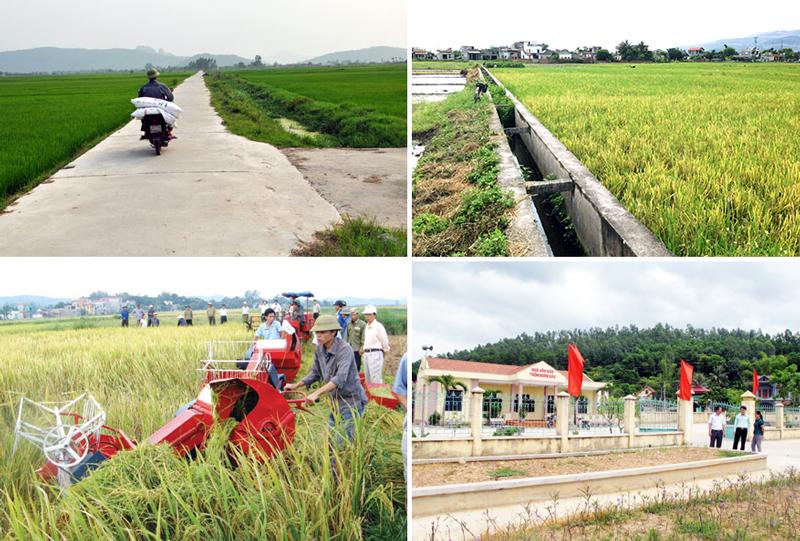 Kế hoạch tổ chức các Hội nghị vùng và Hội thảo chuyên đề về tổng kết 10 năm thực hiện Chương trình MTQG xây dựng nông thôn mới (2010 – 2020) của Ban Chỉ đạo Trung ương các Chương trình MTQG giai đoạn 2016 – 2020