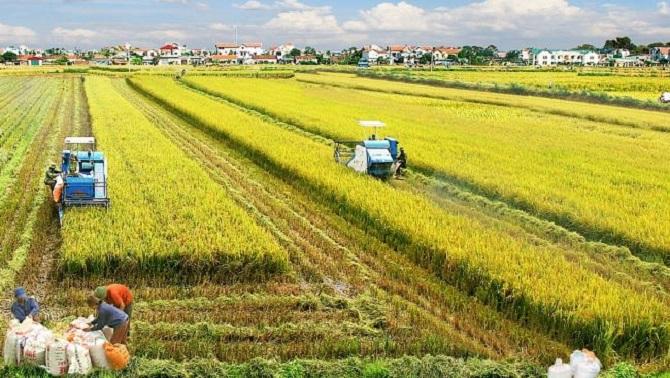 Hướng dẫn cuộc thi báo chí viết về nông thôn mới gắn với cơ cấu lại ngành nông nghiệp năm 2019.