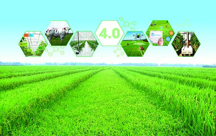 Xử lý ý kiến của Công ty cổ phần Novatus Global về chuyên đề nông nghiệp