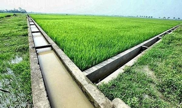 Tăng cường phát triển thủy lợi nhỏ, thủy lợi nội đồng và tưới tiên tiến, tiết kiệm nước
