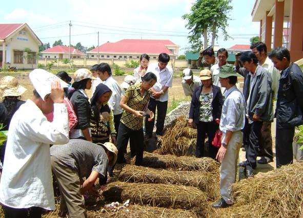 Hướng dẫn tổng kết 10 năm thực hiện đào tạo nghề cho lao động nông thôn trong xây dựng nông thôn mới.
