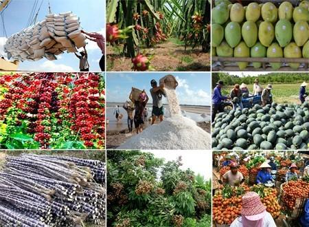 Ban hành Bộ tiêu chí (tạm thời) đánh giá, xếp hạng sản phẩm Chương trình mỗi xã một sản phẩm tỉnh Đắk Lắk