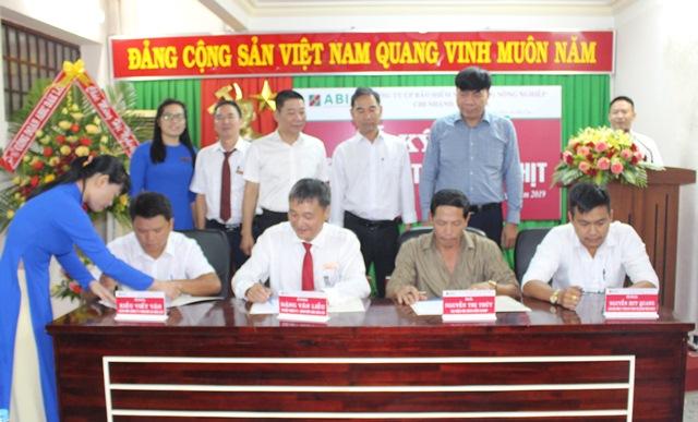 ABIC Đắk Lắk ký kết 03 hợp đồng Bảo hiểm trâu, bò thịt đầu tiên
