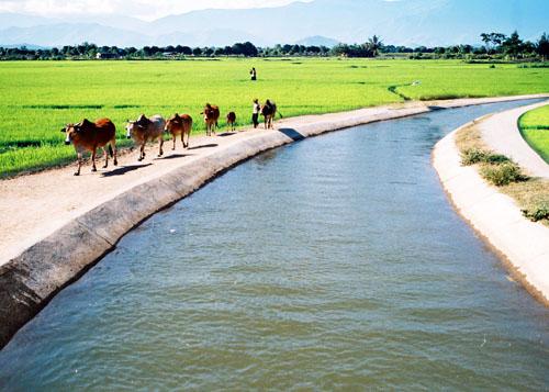 Báo cáo đánh giá 10 năm thực hiện tiêu chí thủy lợi trong Chương trình MTQG xây dựng Nông thôn mới giai đoạn 2010-2020