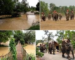 Thẩm định Quy hoạch tổng thể phát triển Khu du lịch Yok Đôn, tỉnh Đắk Lắk.