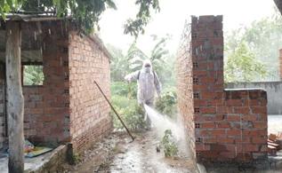 Huyện M'Drắk phát hiện thêm ổ dịch tả lợn Châu Phi