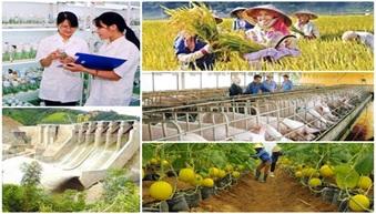 Triển khai thực hiện Bộ tiêu chí giám sát và đánh giá cơ cấu lại ngành nông nghiệp theo Quyết định số 678/QĐ-TTg ngày 19/5/2017 của Thủ tướng Chính phủ
