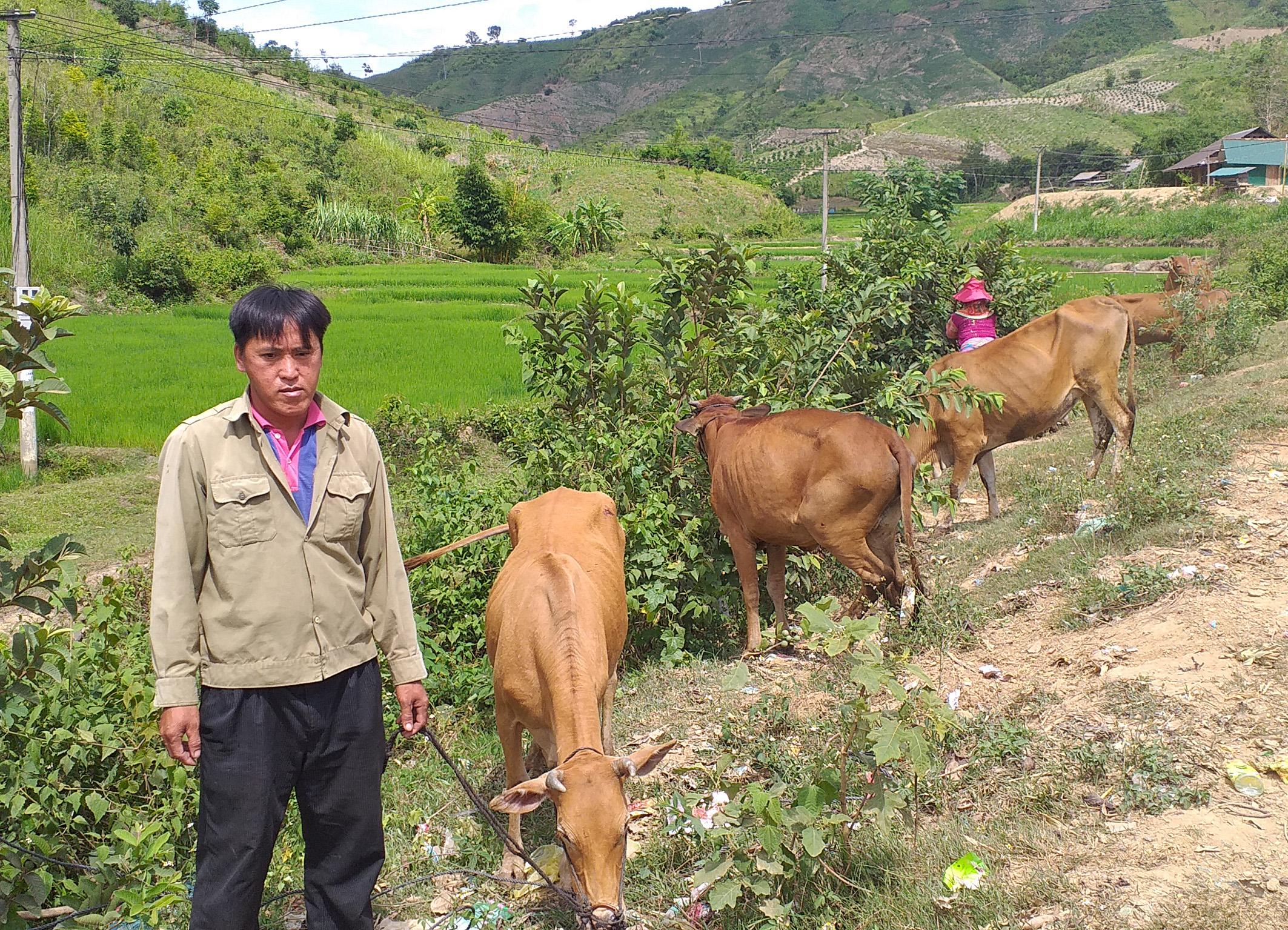 """Chương trình """"Về với vùng cao Ea Rơk"""", xã Cư Pui, huyện Krông Bông"""